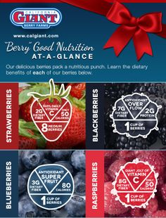 Berry Nutrition
